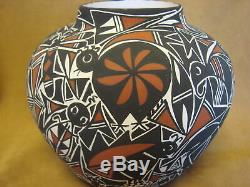 Native American Acoma Nature Pot Hand Painted by C. Estevan
