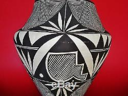 Native American Traditional Hand-Coiled Egg-Shell Acoma Olla Jar signed S. S