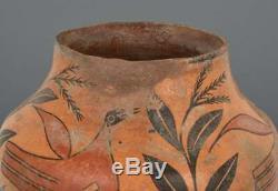 Zia Historic Native American Pictorial Jar/Pot
